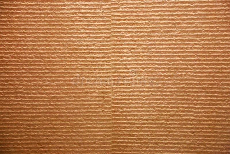 Skanujący wizerunek Panwiowy Pasiasty Przetwarza karton fotografia royalty free