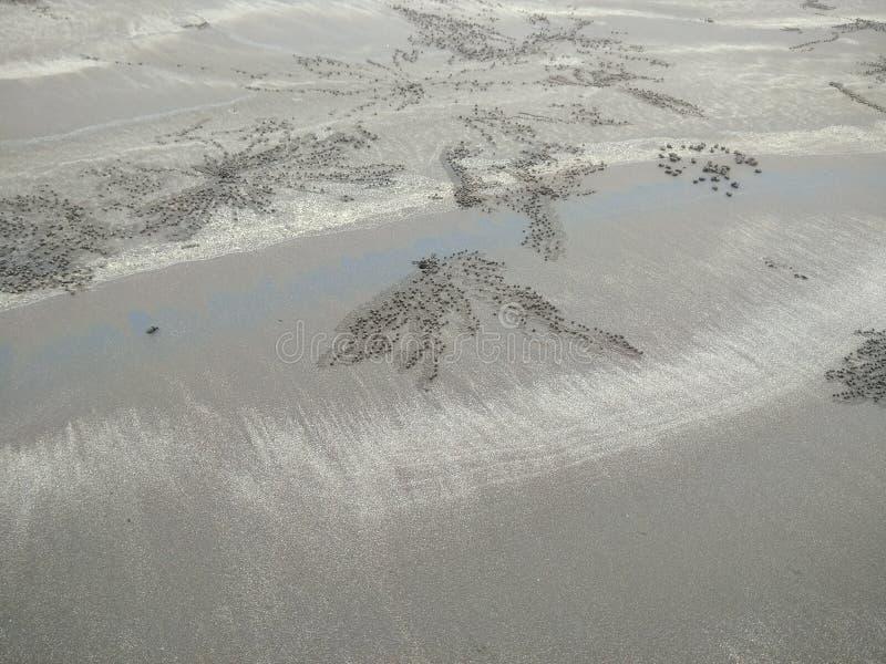Skapare på strandhavet royaltyfri fotografi