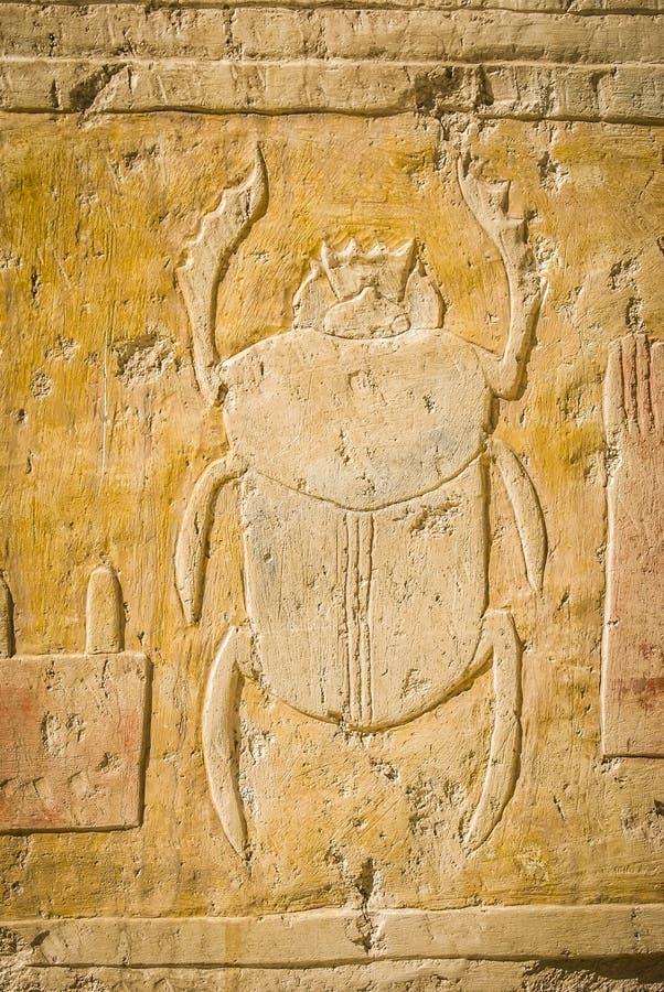 Skarabé i de forntida egyptiska hieroglyf arkivfoton