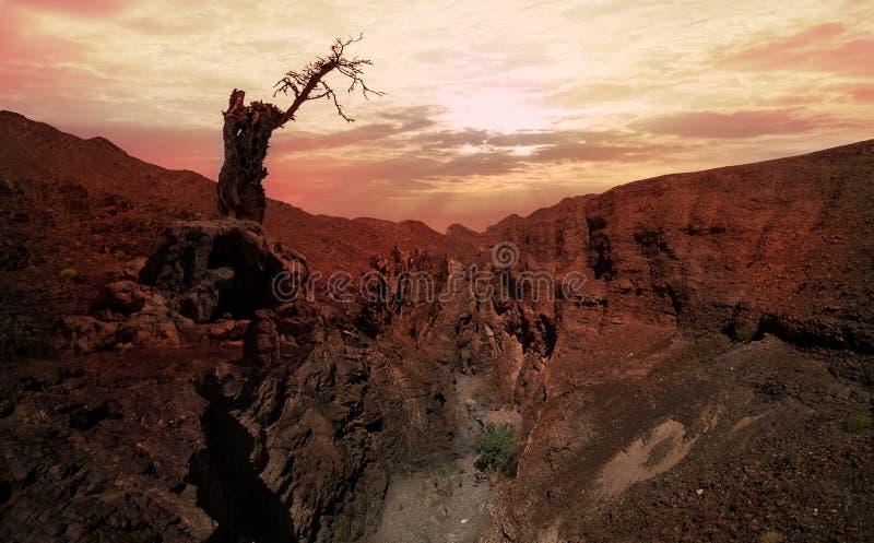 Skarp klippa över djup dal mot solnedgången royaltyfria foton