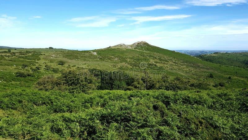 Skarp Tor & x28; Dartmeet/österut Dartmoor& x29; Cirkuläret går, Dartmeet, den Dartmoor nationalparken arkivbild