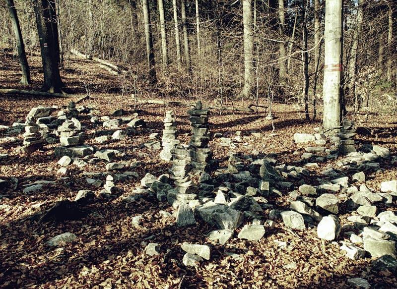 Skarpa stenar som staplas i nedgångskog Ensamt en sörja i en sätta in och ett gult gräs arkivfoton
