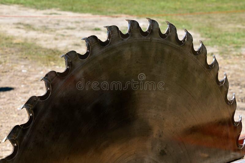 Skarpa tänder på ett enormt sågblad för att klippa loggar royaltyfri fotografi