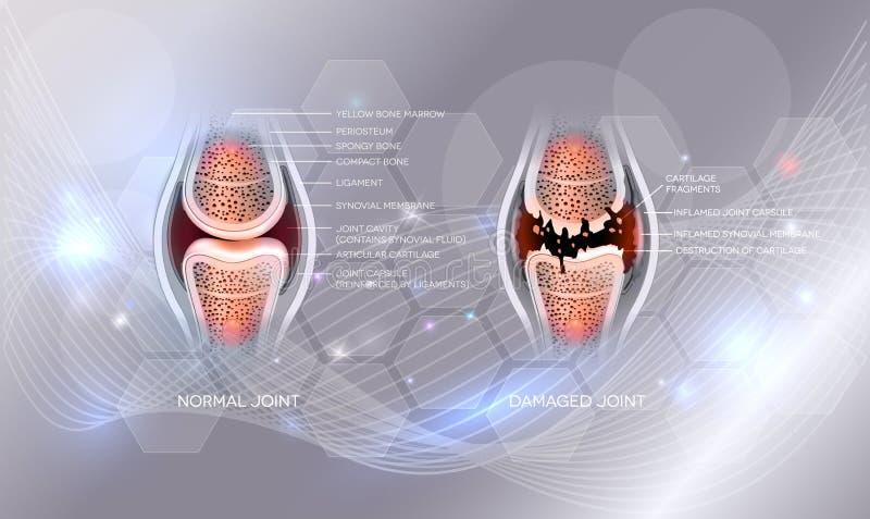 skarv vektor illustrationer