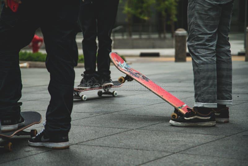 Skateboarder med vänner royaltyfri bild