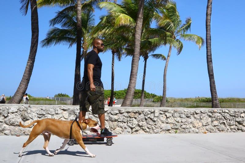 Skateboardfahrer mit Hund im Südstrand lizenzfreies stockfoto