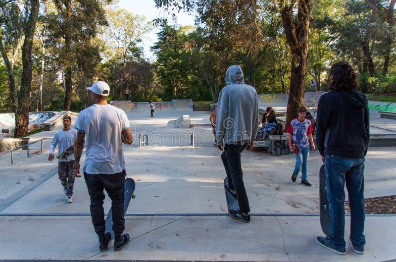 Skateres no parque do patim imagem de stock