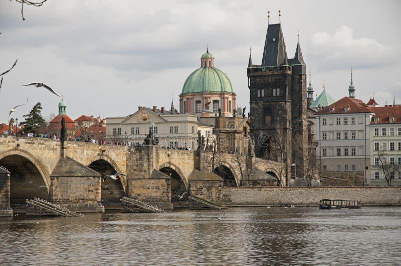 Skatter av Prague royaltyfria foton