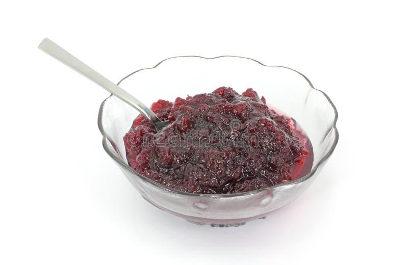 sked för serving för cranberrymaträttsås royaltyfria foton