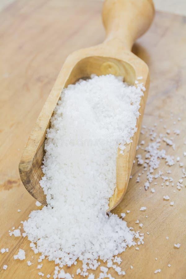 Skeden av att laga mat saltar fotografering för bildbyråer