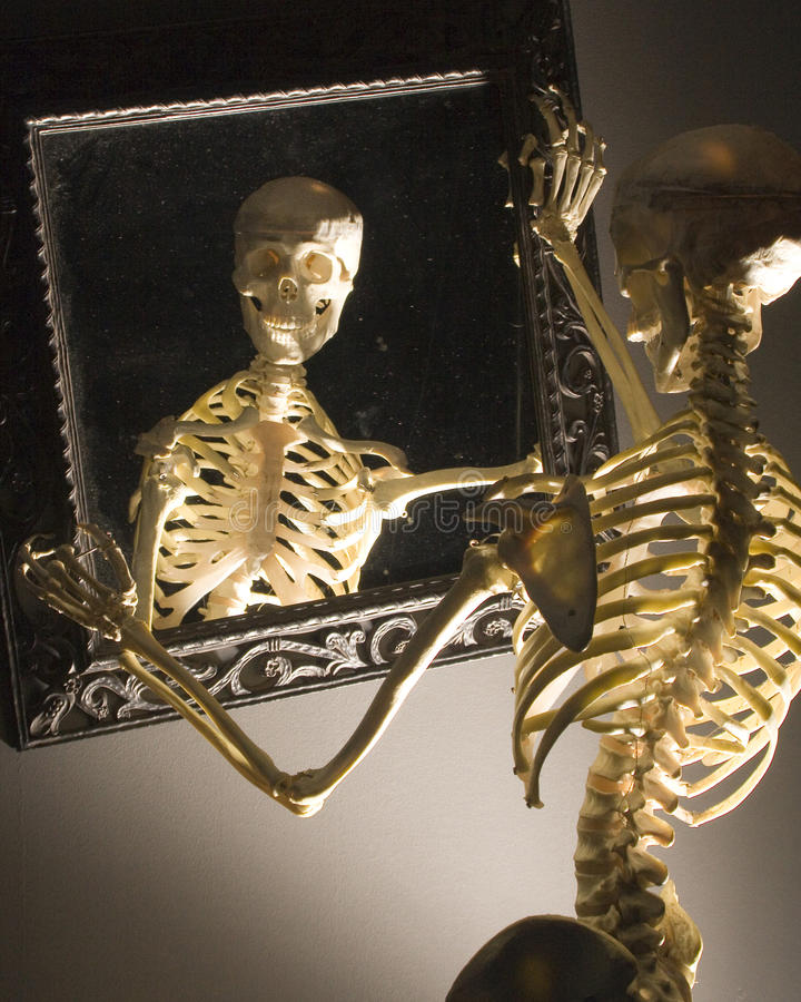 Free Skelaton Royalty Free Stock Photography - 35392007