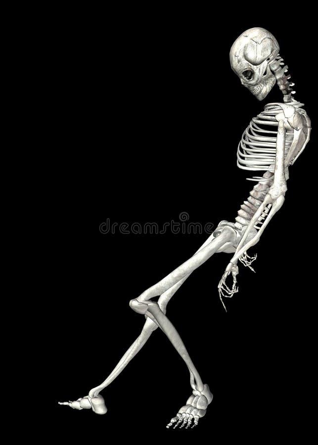 Skelet. 2 stock illustratie