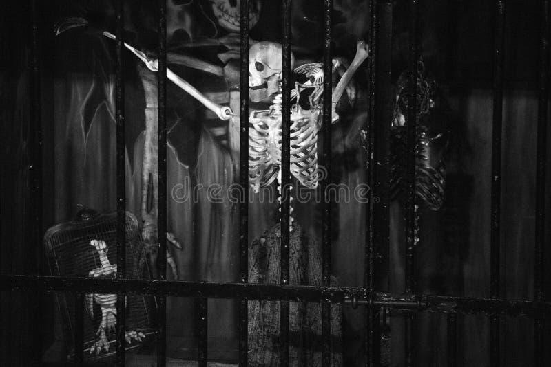 Skelet in kerker stock foto's