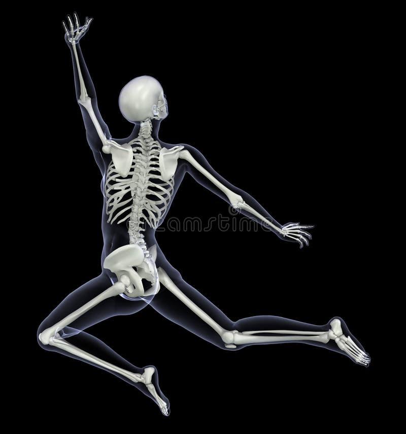 Skelet in Motie 1 stock illustratie