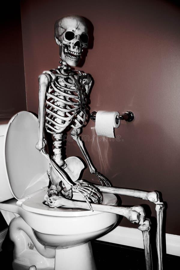 Skelet op het Toilet royalty-vrije stock fotografie