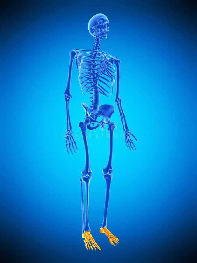 Skeletachtig betaalt vector illustratie