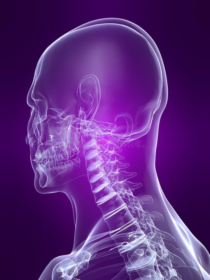 Skeletachtig hoofd vector illustratie