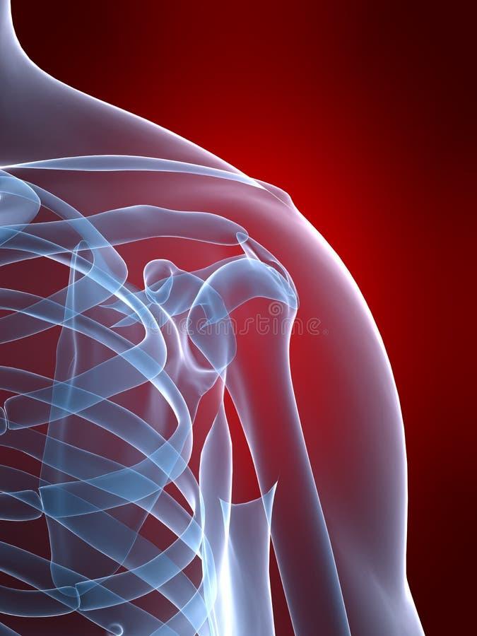 Skeletachtige schouder vector illustratie