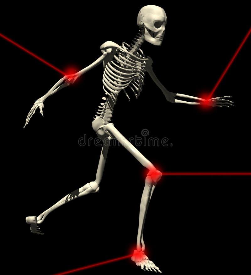 Free Skeleton-1 Stock Image - 18688861