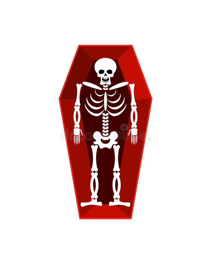 Skeleton in coffin isolated. Religion illustration. human Death vector illustration