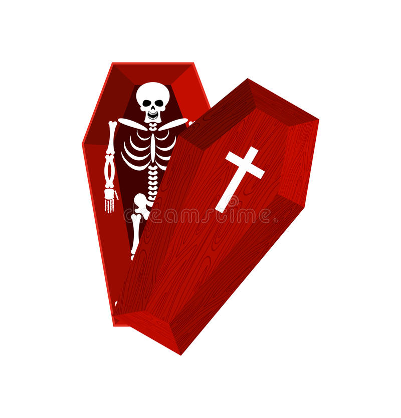 Skeleton in coffin. Open casket and skull and bones. Dead man in vector illustration