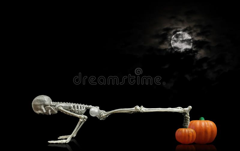 Skeleton drücken Sie Ups stockfoto