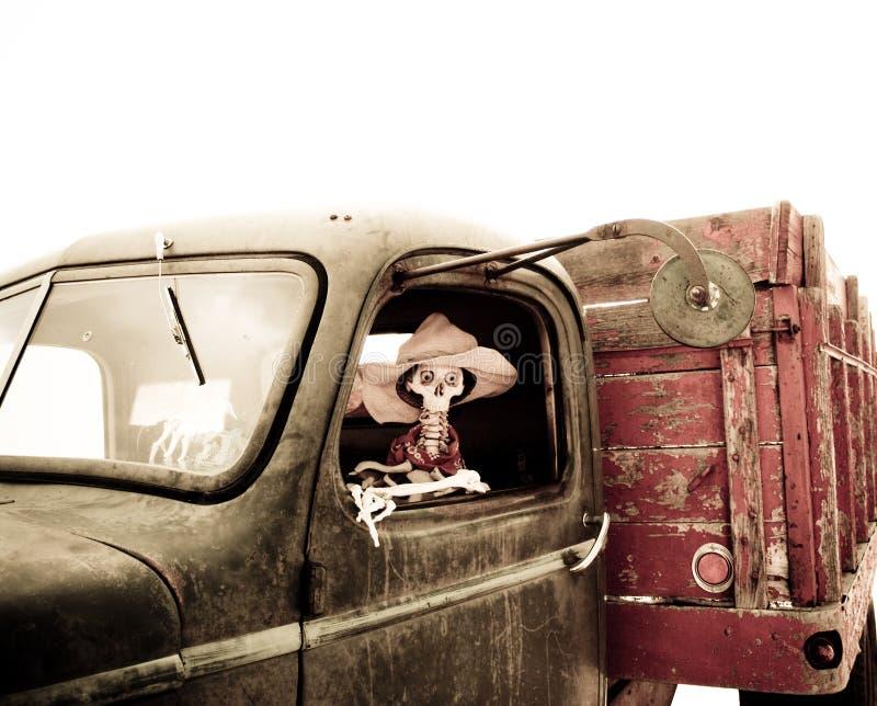 Skeleton driving royalty free stock image