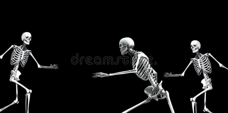 Skeleton Group 2 vector illustration