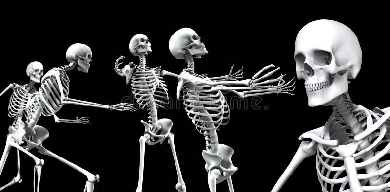 Download Skeleton Group 2 stock illustration. Illustration of black - 3267769