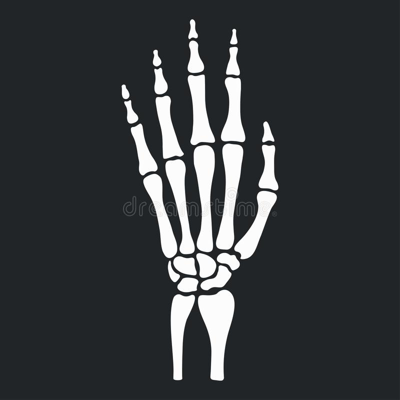 skeleton hand with bones icon vector stock vector illustration rh dreamstime com hand bones vector skeleton hand drawn vector