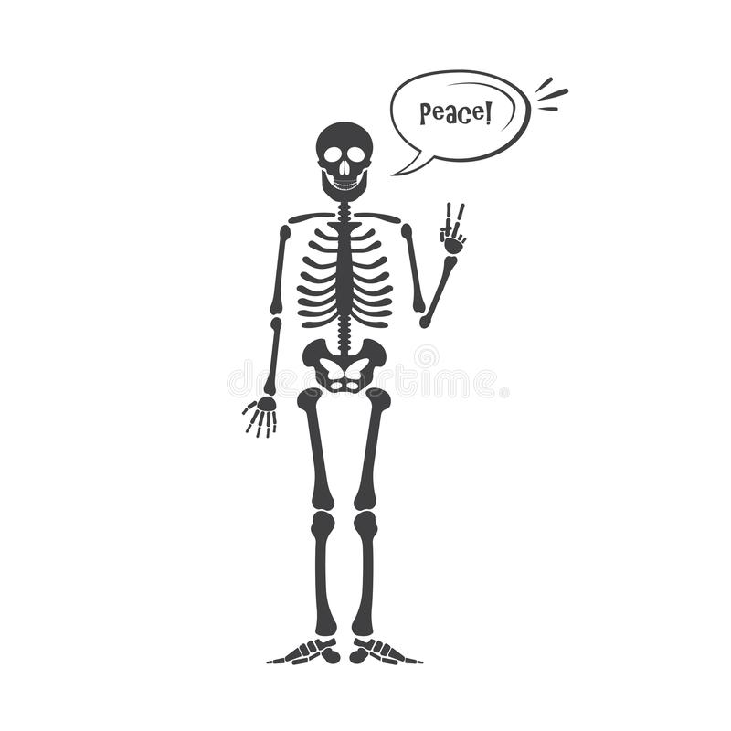 Skeleton Human Anatomy. Vector Halloween Black Skeleton Isolated On ...