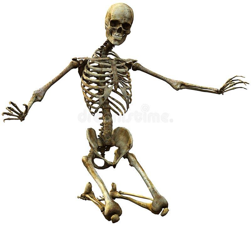 Skeleton Knien lizenzfreie abbildung