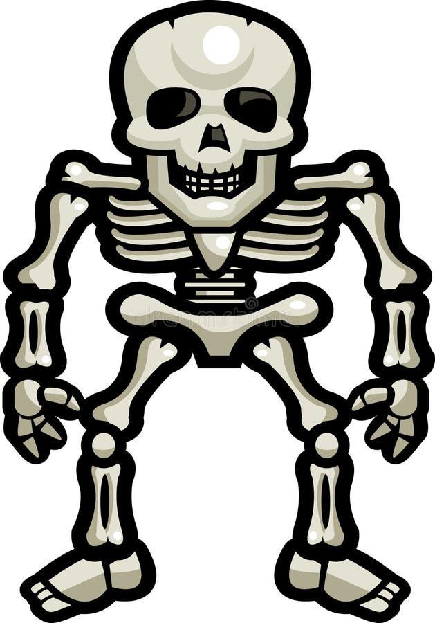 Skeleton Knochen vektor abbildung