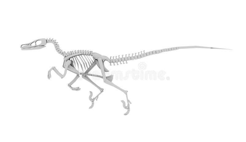 Skeleton Konzept des Dinosauriers übertragen lizenzfreie abbildung