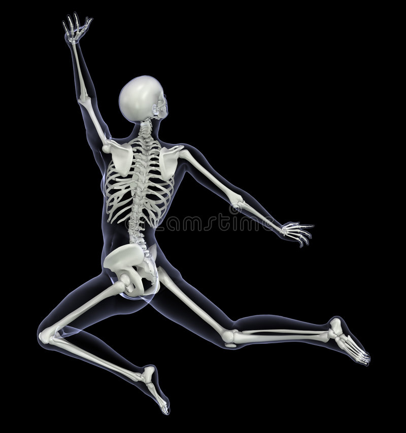 skeleton in motion 1 stock photos - image: 2304403, Skeleton