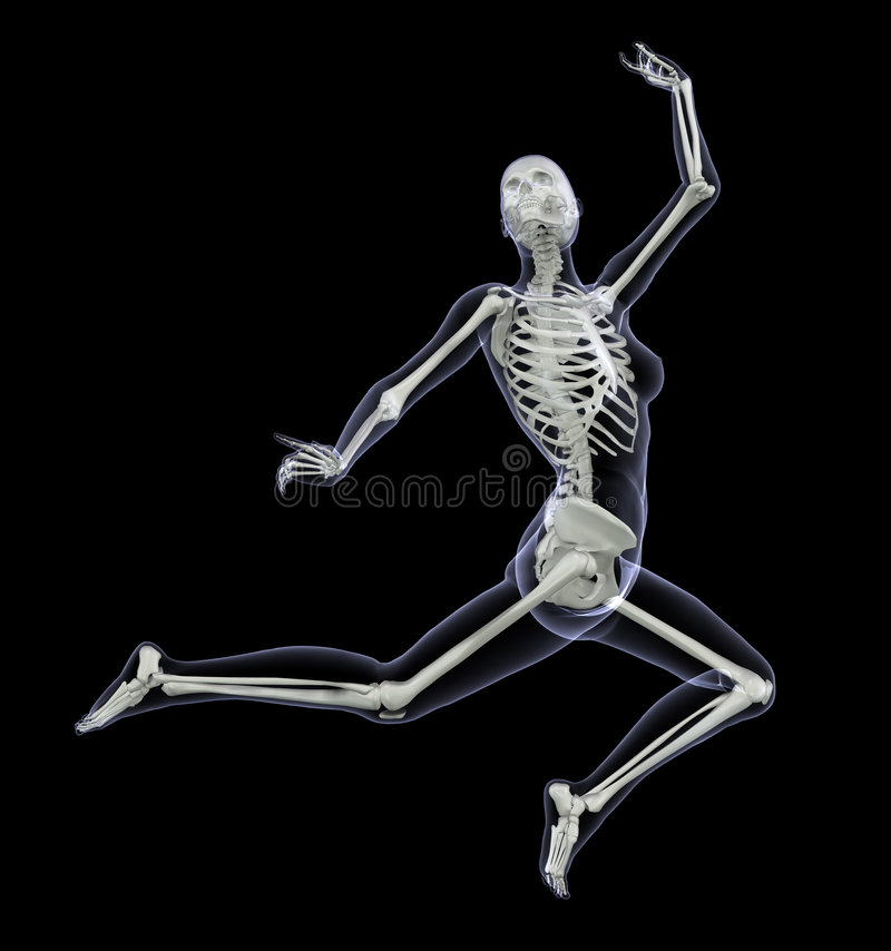 skeleton in motion 2 royalty free stock photo - image: 2304425, Skeleton