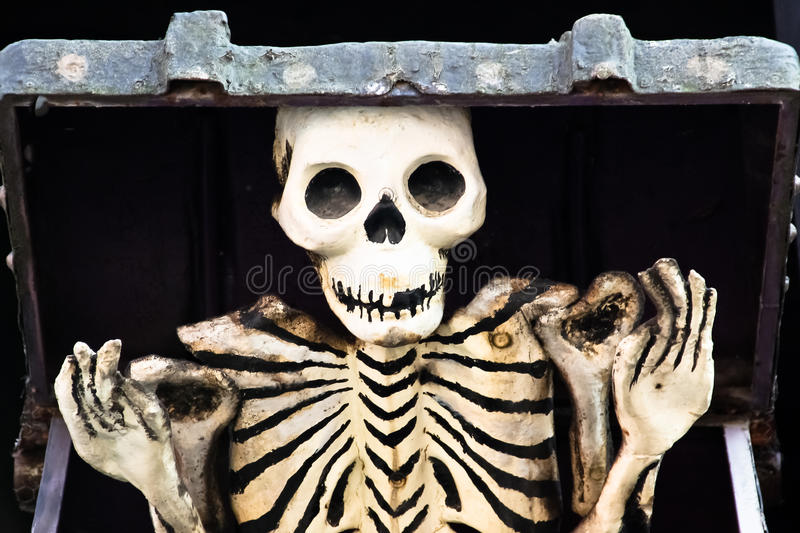 Download Skeleton out of the box stock photo. Image of death, bone - 19974550