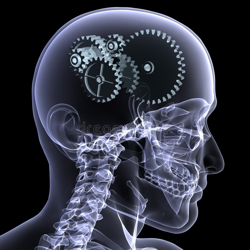 Skeleton X-Ray - Wheels a Turn vector illustration