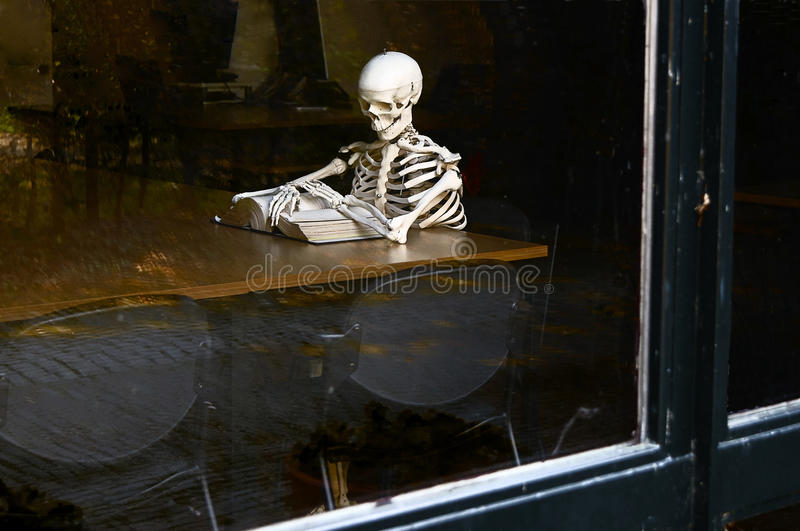 Skeleton reading book in the library stock photography