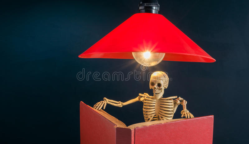 Skeleton reading a book royalty free stock photography