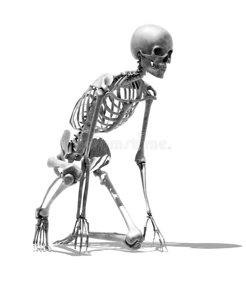 Skeleton Runner - Pencil Drawing Style. 3D render of a skeleton in a runner's starting pose - special shaders were used to create the appearance of a pencil vector illustration