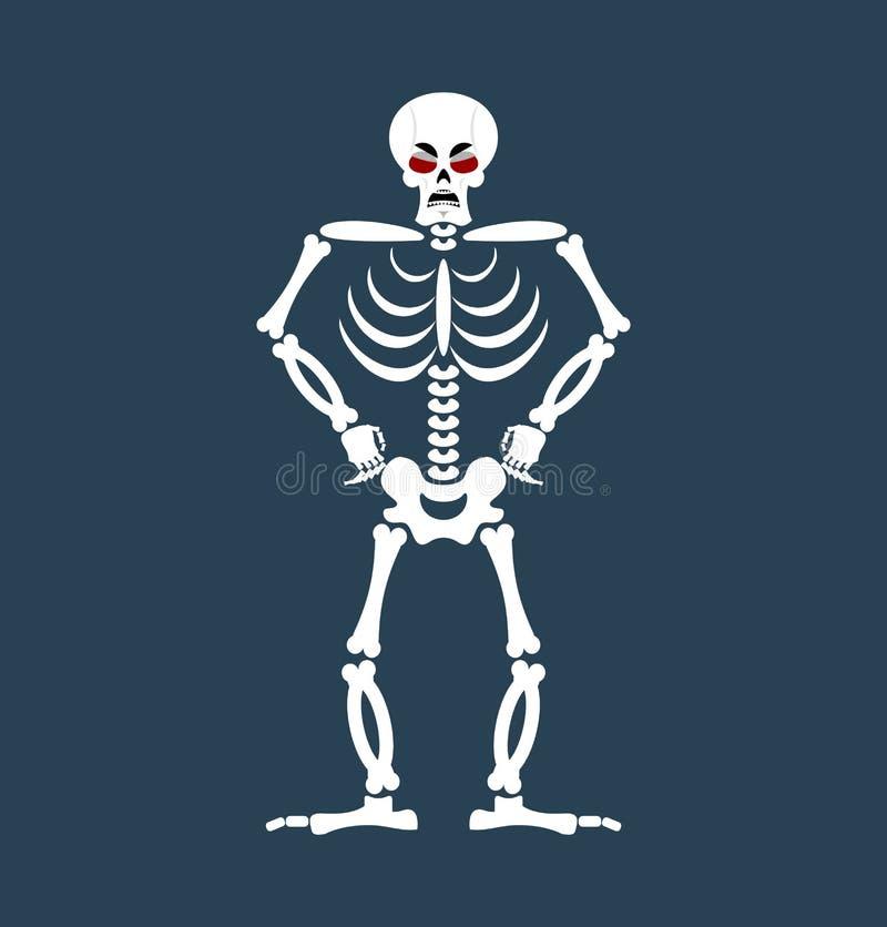 Fantastisch Anatomie Und Physiologie Praxis Tests Knochen Galerie ...