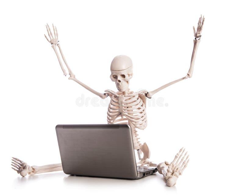 Skeleton Working Stock Photos