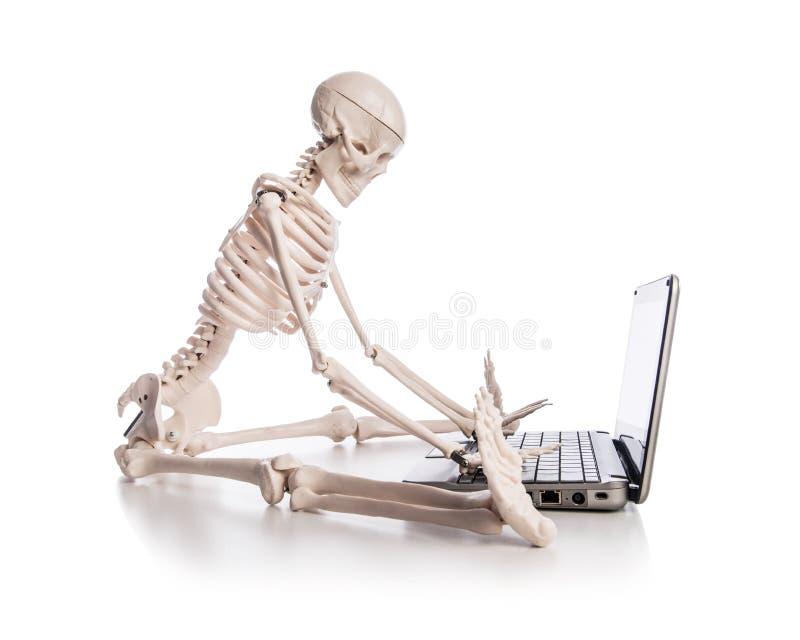 Download Skeleton Working Royalty Free Stock Photo - Image: 30095275