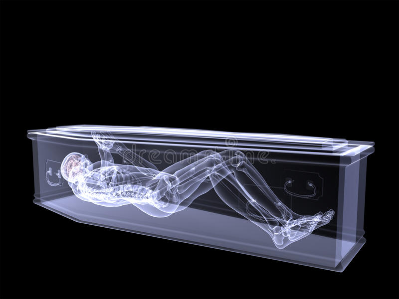 Download Skeleton X-Ray - Trapped In A Coffin Stock Illustration - Image: 24720329