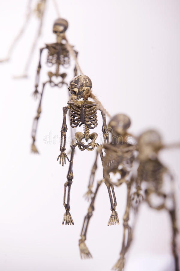 Download Skeletons stock photo. Image of scary, halloween, person - 11274576