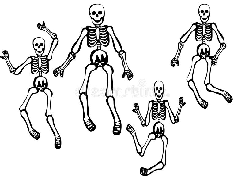 Skeletons Illustration. Isolated on a white background in different poses royalty free illustration