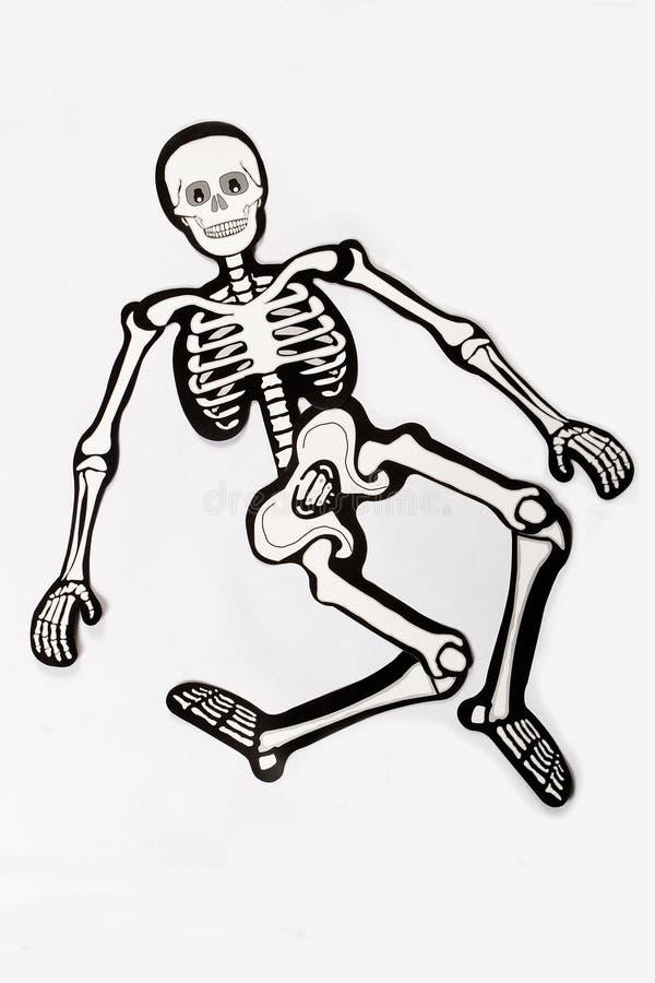 Download Skelett stockbild. Bild von fall, schlaufe, umreiß, arme - 21545265