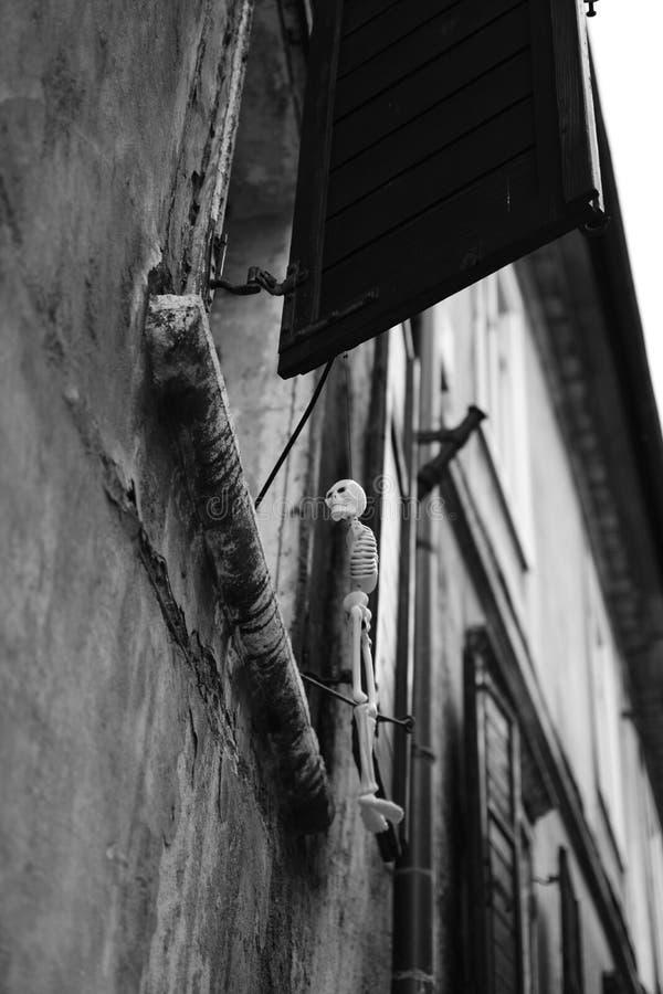 Skelett auf einem Fenster stockfotos