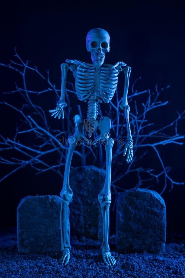 Skelett, das am Friedhof steht lizenzfreie stockfotos